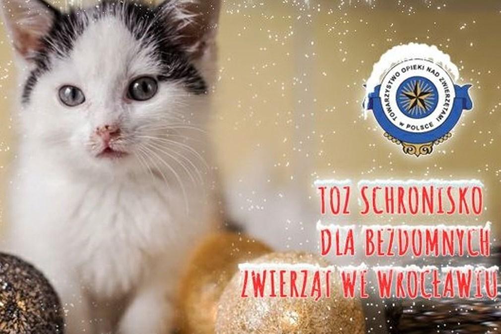 """Podziękowania za udział w akcji """"Świąteczna zbiórka darów dla zwierząt ze schroniska"""""""